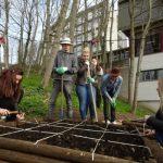 Nouveau projet en route : les jardins partagés