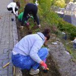 Aménagements pour le projet «Jardins partagés»